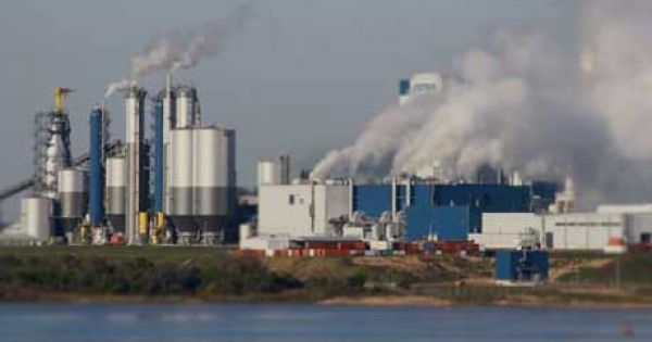 Botnia: un informe confirma contaminación en los ríos Uruguay y Gualeguaychú - El Cronista